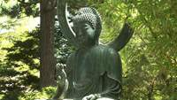 Video of statue of Buddha