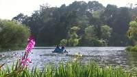 Video gratis de paddle boat on lake en HD