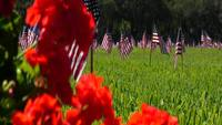 Red Flowers and US Flags - Veterans Cementery