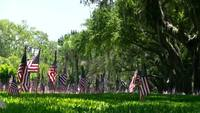 Row of US flags over Veterans Cemetary