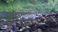 Wasser Felsen 2