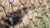 Rusty Grid Fence Stock Footage