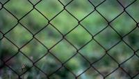 Rusty Mesh Fence Gratis HD Video