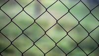 Net Fence Libres de Derechos Stock Video