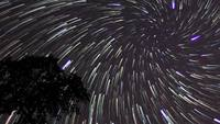 Star Trails Royaltyfria HD-Stock Footage