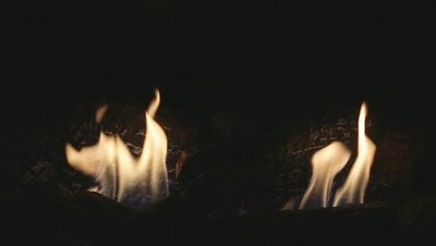 A Gas Fireplace with Dancing Flames