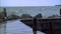 Waves Splashing Wooden Pier Free HD Video