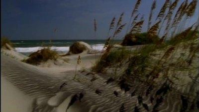 Ocean Waves Free Stock Footage
