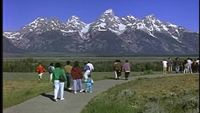Parque Nacional Grand Teton Archivo De Video