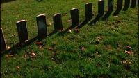 National Military Cemetery Royalty Free Footage