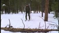 Skier Meets an Obstacle Stock Footage Libres de droits