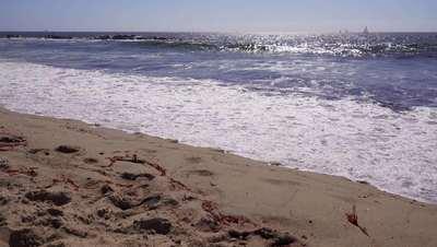 Waves Crashing on California Beach 4K