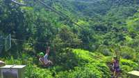 Zipliners que recorren Hawaiian Valley 4K