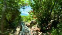 Riding on a Dragon Coaster part 5