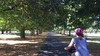 Cycling in Bushy Park
