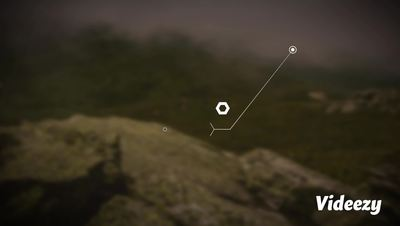 Clean Minimal Hexagonal Call-Out After Effects 模板