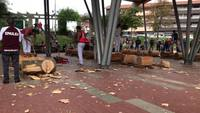 Wood chopping tävling lager video aizkolari