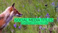 Mint Social Media Titles