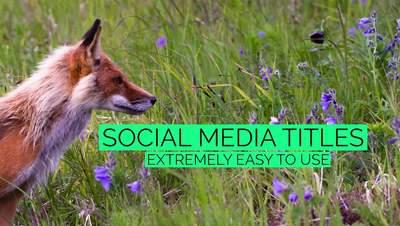 Mint Social Media Titles