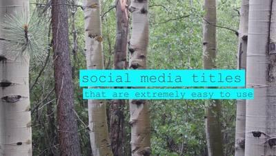 Wave Social Media Titles