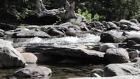 Water-rushes-around-rocks-in-a-creek