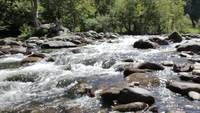 Wasser Rapids in einem Creek Stock Video