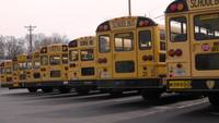 A Row of School Buses