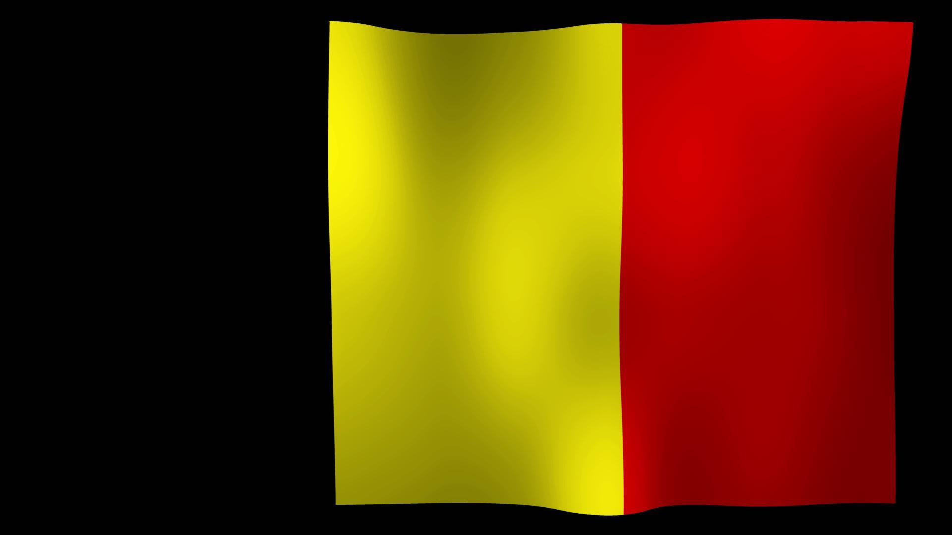 Kostenlose Belgien Flagge 4K Motion Loop Stock Video
