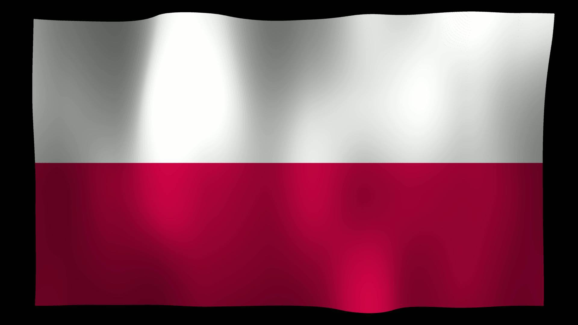 free poland flag 4k motion loop stock video