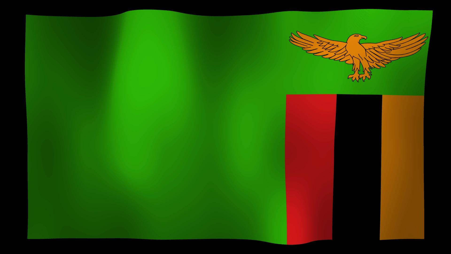 Free Zambia Flag 4K Motion Loop Stock Video