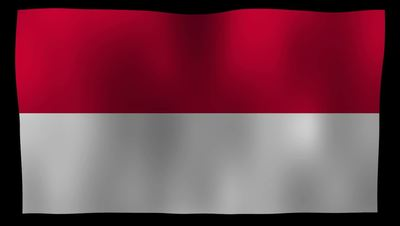Indonesia Flag 4K Motion Loop After Effects 模板