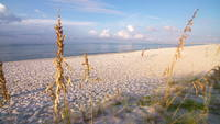 Pensacola Strand zur goldenen Stunde
