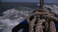 Ropes on the back of the boat