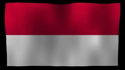 Monaco Flag 4K Motion Loop After Effects 模板