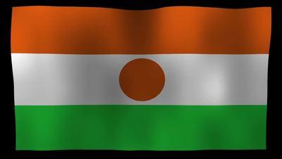 Niger Flag 4K Motion Loop After Effects 模板