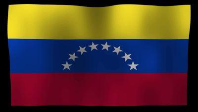 Venezuela Flag 4K Motion Loop After Effects 模板