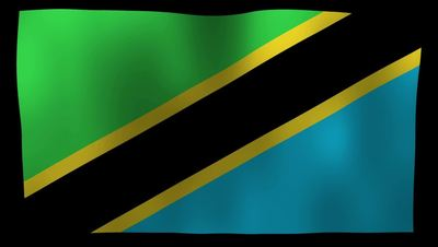 Tanzania Flag 4K Motion Loop After Effects 模板