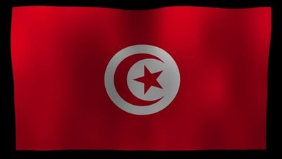 Tunisia Flag 4K Motion Loop After Effects 模板