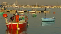 Fisherman-and-boats-in-harbor