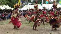 Cultural Dance in Papua New Guinea