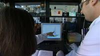 Les scientifiques travaillent ensemble dans un laboratoire