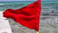 Red warning flag waving on the beach