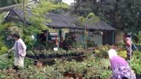 Blomma gård i Malaysia