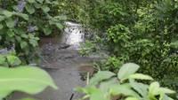 pequeño río