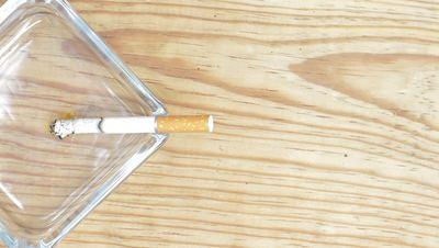 【烟雾影片素材】精致的40款烟雾影片素材下载,烟雾动画模板的影片格式