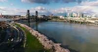4k uhd drone portland oregon bridge river cherry blossoms decending_ fernando