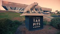 Tracking shot of La Brea Tar Pits and Museum entrance in 4K