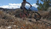 Mountain bikers cycle by camera on Colorado trail | Free Stock Footage