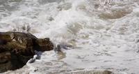 Statisch schot van overzeese golven die een rots op het strand raken