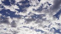 Tidsförlopp av stor grupp grå altocumulus moln som rör sig från höger till vänster på blå himmel i 4K